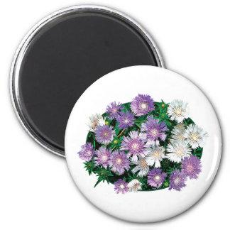 La lavanda y el blanco alimenta asteres imán redondo 5 cm