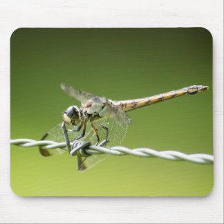 La libélula desafía el cojín de ratón del alambre alfombrilla de ratón