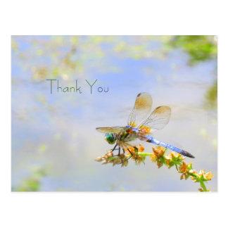 La libélula en colores pastel le agradece postal