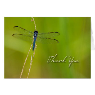 La libélula le agradece tarjeta