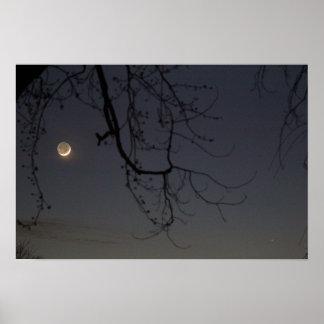 La luna y Mercury Póster
