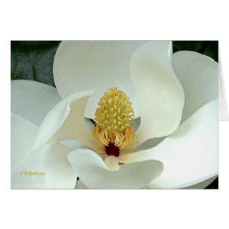 La magnolia de Bobby I Tarjeta De Felicitación