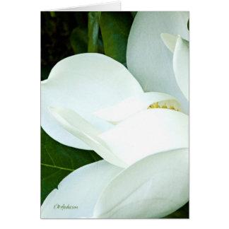 La magnolia de Bobby III Tarjeta De Felicitación