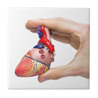La mano lleva a cabo el corazón humano modelo azulejo cuadrado pequeño