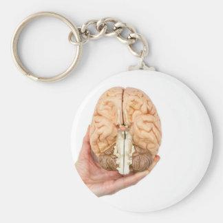 La mano sostiene el cerebro humano modelo en el llavero