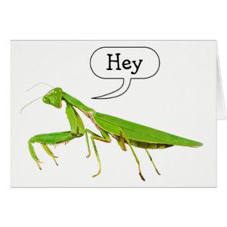 La mantis religiosa dice ey Notecard Tarjeta Pequeña