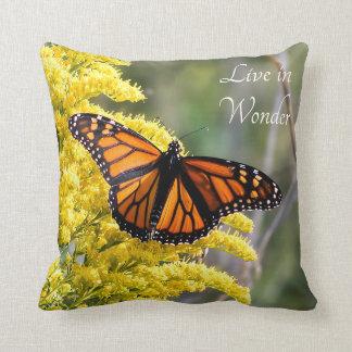 La mariposa de monarca vive en almohada de tiro de