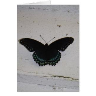 La mariposa negra y azul en blanco lavó la madera tarjeta de felicitación