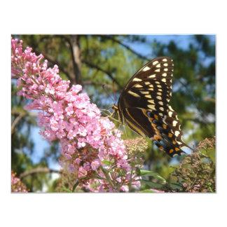 ¡La mariposa perfecta! Invitación 10,8 X 13,9 Cm
