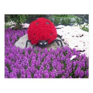 La mariquita de LadyLUCK florece el jardín púrpura Postal