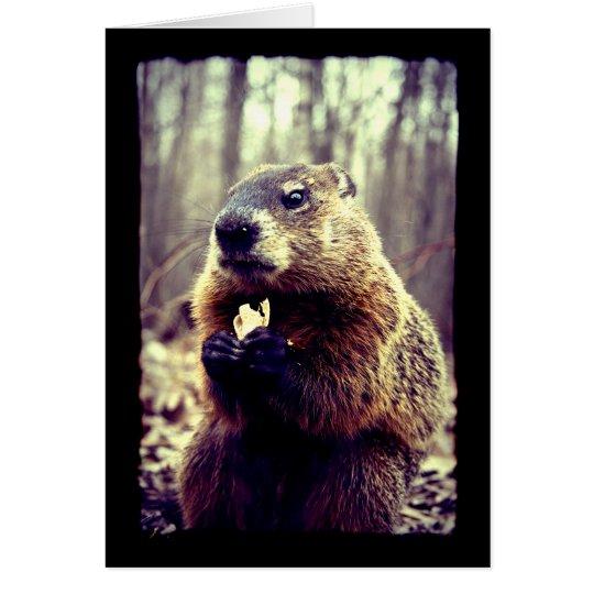 La marmota y la tarjeta de felicitación del