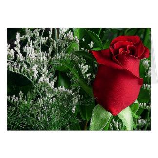 La mayoría del capullo de rosa hermoso tarjeta de felicitación