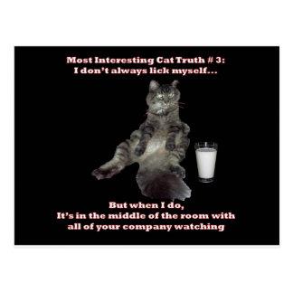 La mayoría del gato interesante #3.jpg postal