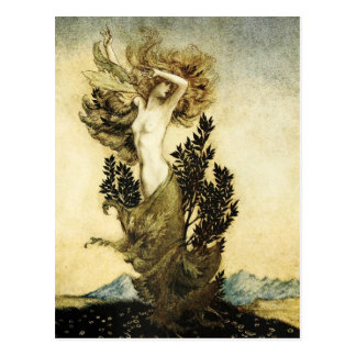 La metamorfosis de Daphne en un árbol Postal