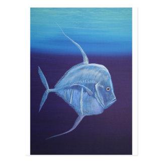 La mirada juvenil abajo pesca postal