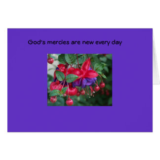 La misericordia de dios es nueva… felicitación