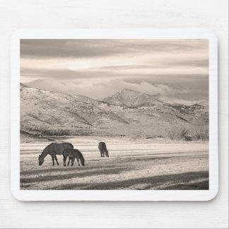 La montaña rocosa Colorado desea mañana máxima del Alfombrillas De Ratones