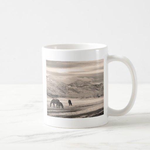 La montaña rocosa Colorado desea mañana máxima del Taza