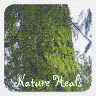 La naturaleza del bosque cura, los pegatinas de calcomanías cuadradas personalizadas