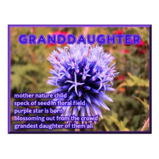 La nieta más magnífica de todos tarjeta postal