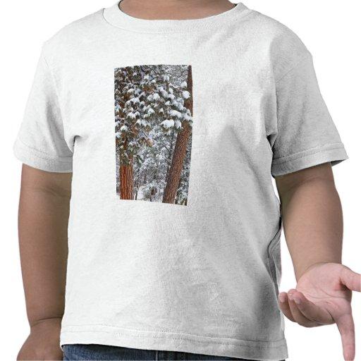 La nieve llena las ramas de los árboles de pino camisetas