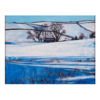 La nieve sombrea 2010 postal