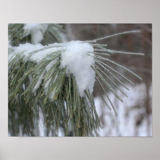 La nieve y el hielo cubrieron invierno de las aguj poster