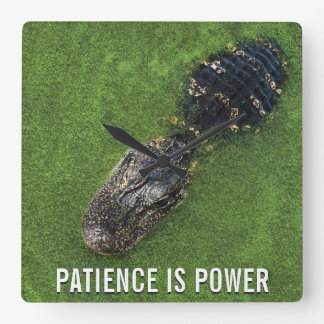 La paciencia es poder • Cocodrilo • Naturaleza de Reloj Cuadrado