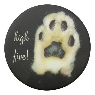 La pata blanco y negro linda del gato añade su goma de borrar