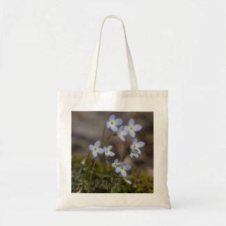 La pequeña púrpura de Bluets florece la bolsa de