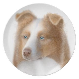 La placa australiana del perro de pastor plato de comida