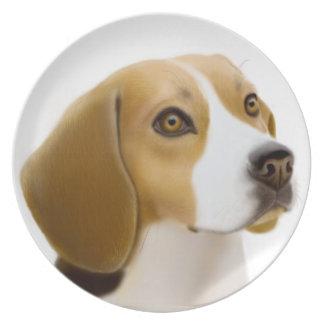 La placa leal del perro del beagle platos de comidas