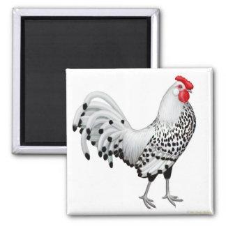 La plata Spangled el imán del gallo de Hamburgo