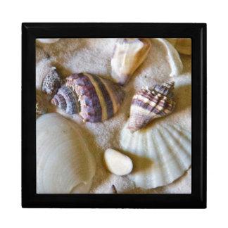 La playa descasca el tema #2 caja de regalo