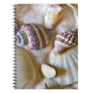 La playa descasca el tema #2 cuaderno