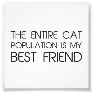 La población entera del gato es mi mejor amigo impresión fotográfica