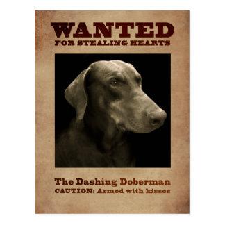 La postal de estrellazo del Doberman