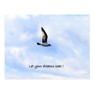 "La postal de la gaviota ""dejó sus sueños elevarse"