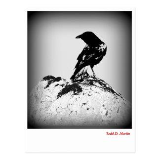 La postal del cuervo