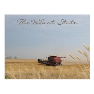 La postal del estado del trigo