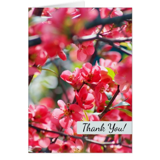 La primavera bonita de las floraciones rojas tarjeta pequeña