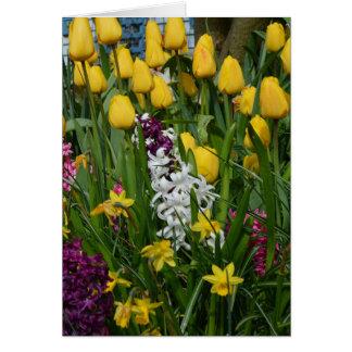 La primavera florece la tarjeta de felicitación