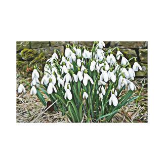La primera primavera florece, la impresión blanca