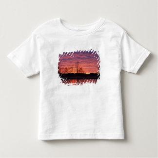 La puesta del sol brillante refleja en el río del camisas