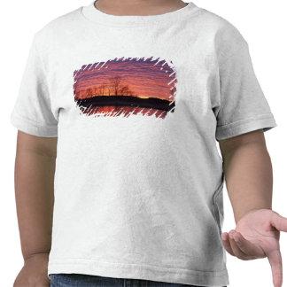 La puesta del sol brillante refleja en el río del camisetas