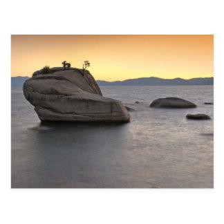 La puesta del sol en los bonsais oscila, el lago postal