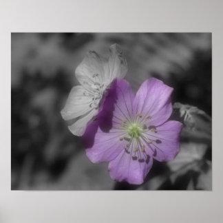 La púrpura florece el poster parcial de la natural