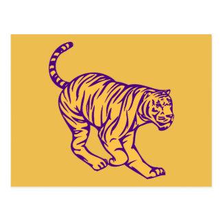 La púrpura raya el ejemplo salvaje del tigre del postal
