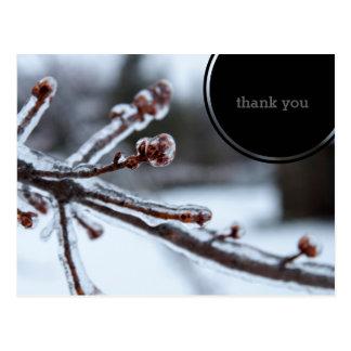 La rama de árbol helada le agradece postal
