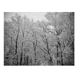 La respiración pasada del invierno tarjetas postales